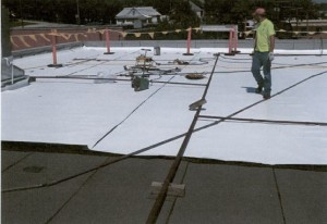Harness Roofing 1 - Copy